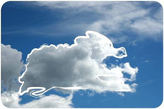 nuage_elephante_1