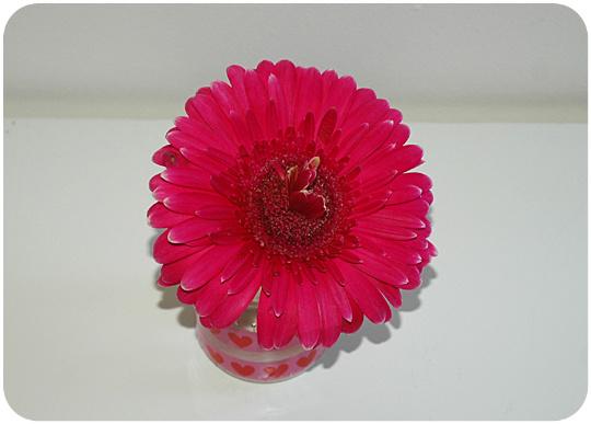 glass_flower_4