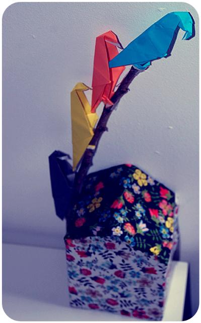 parrot_paper_2