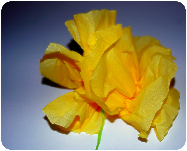 DSC_1254_paper-flower